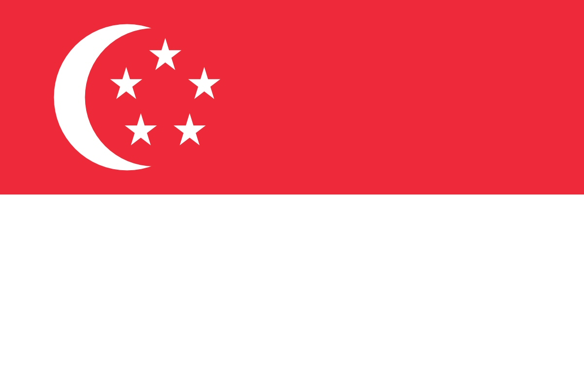 singaporean flag large